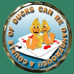 couple of ducks spinner book cover