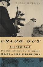 crash out book cover