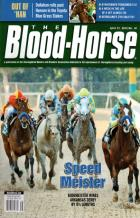 the bloodhorse book cover